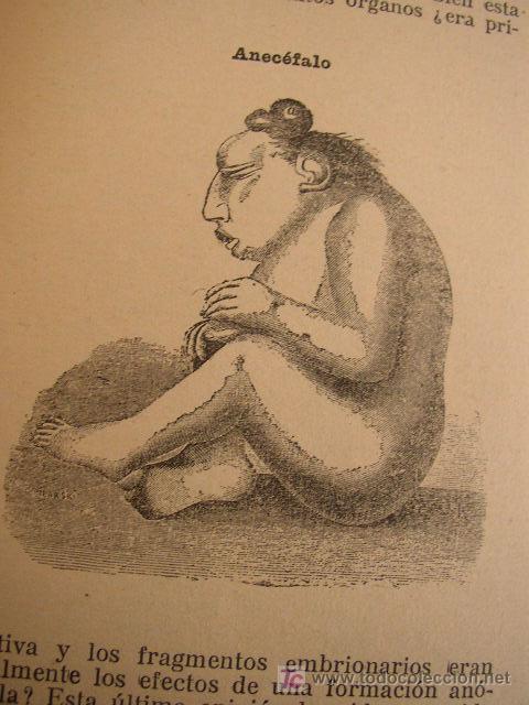 Libros antiguos: LAS MONSTRUOSIDADES HUMANAS- 2ª. SÉRIE ( VIII)-CONOCIMIENTOS PARA LA VIDA PRIVADA-CASA EDT. MAUCCI- - Foto 5 - 19734968